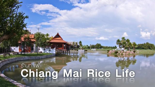"""ร้านกาแฟวิถี """"เศรษฐกิจพอเพียง"""" ที่ Chiangmai Rice Life"""